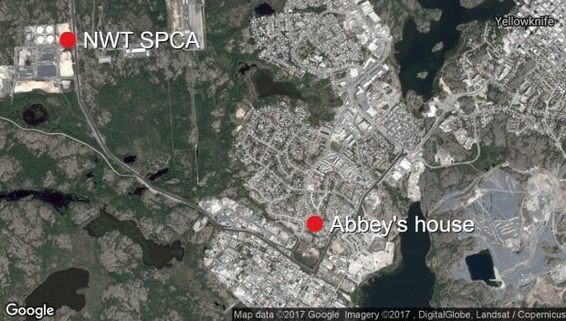 nwt spca and abbey boyd's house