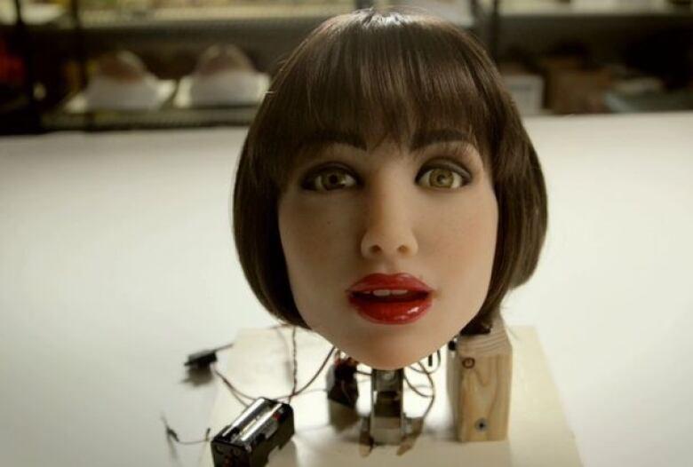 Sexy dolls and robots com