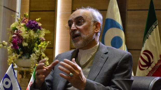 Ali Akbar Salehi, head of the Atomic Energy Organization of Iran (AEOI), a vice-president of Iran, and key architect of deal U.S. President Donald Trump wants to tear up, says he'll 'wait and see' on what the new administration actually does.