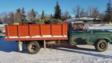 Tree pickup