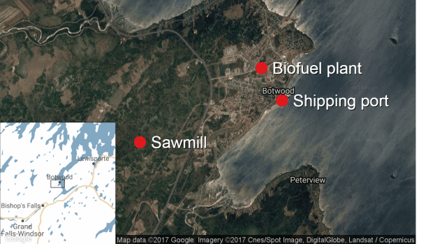 A proposed biofuel project in Botwood would see a sawmill, fuel plant and shipping port bringing jobs to the town.