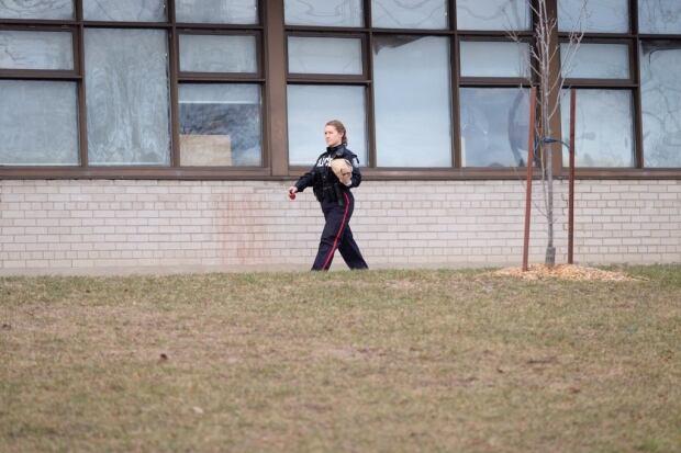Etobicoke school stabbing