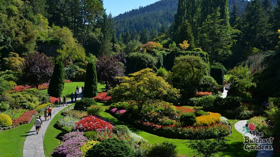 butchart gardens bans sale of bottled water british columbia cbc news