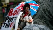 Brexit Protester