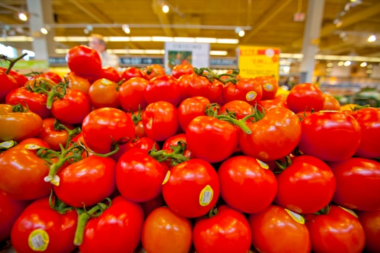 Scientists have a plan to make tomatoes great again   CBC News