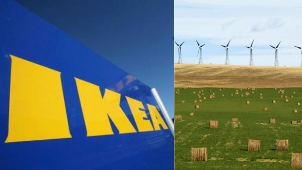Ikea bought a 46-megawatt wind farm in Pincher Creek, Alta., in 2013.
