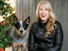 The author of The Truth Commission shares her favourite books about our four-legged companions.