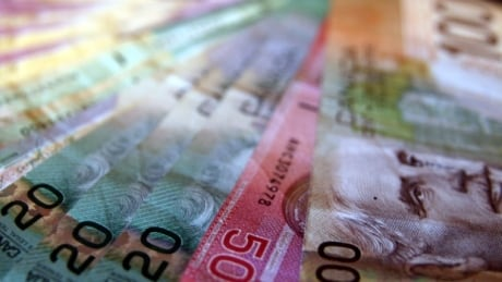 Political fundraising contributions now capped at $4,000 for Liberal leadership