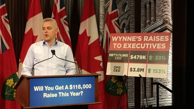 Michael Harris, the Progressive Conservative transportation critic, told a news conference at Queen's Park Wednesday that his party would review all public-sector executive salaries if they win next year's election.