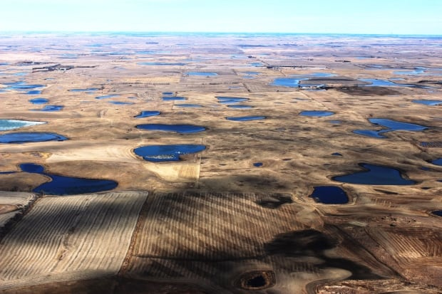 Prairie Potholes