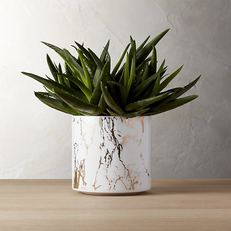 15 Stylish Indoor Planters For Every Budget And Style