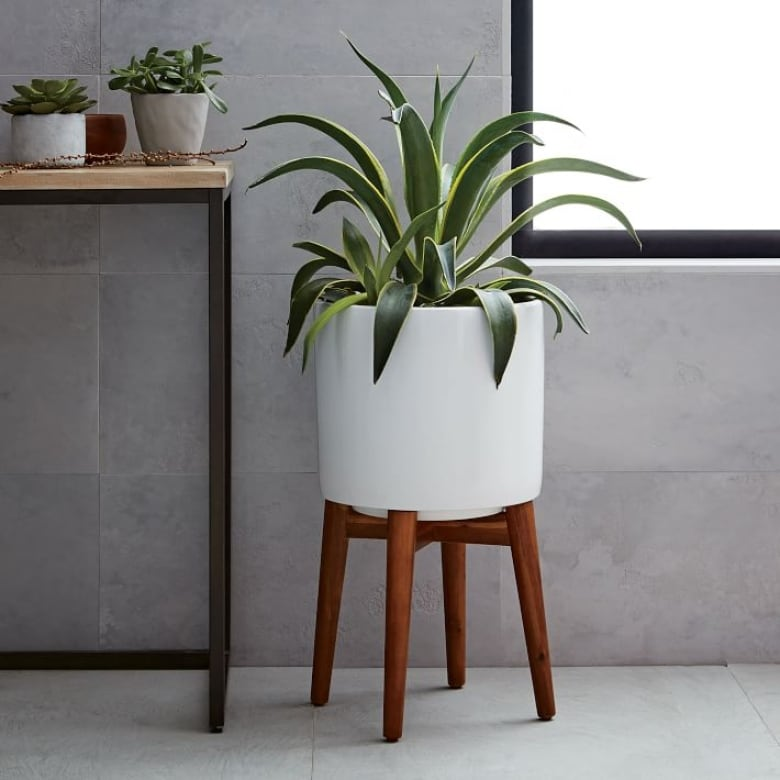 15 stylish indoor planters for every budget and style | CBC Life