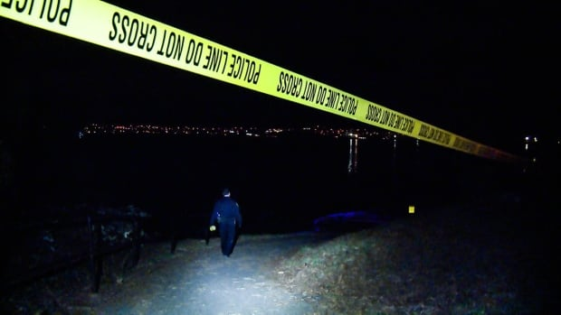 "Police were called to the Stanley Park Seawall around 11 p.m. on Feb. 1, 2017 after a man found the body of Lubomir ""Lubo"" Kunik on the beach."
