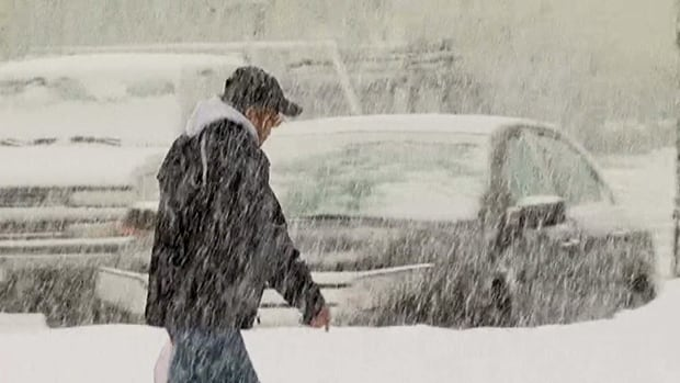 Let it snow: Will Vancouver Island have a white Christmas?
