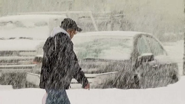 Vancouver Christmas Snow.Heavy Snowfall Alert Issued For Vancouver Island Cbc News