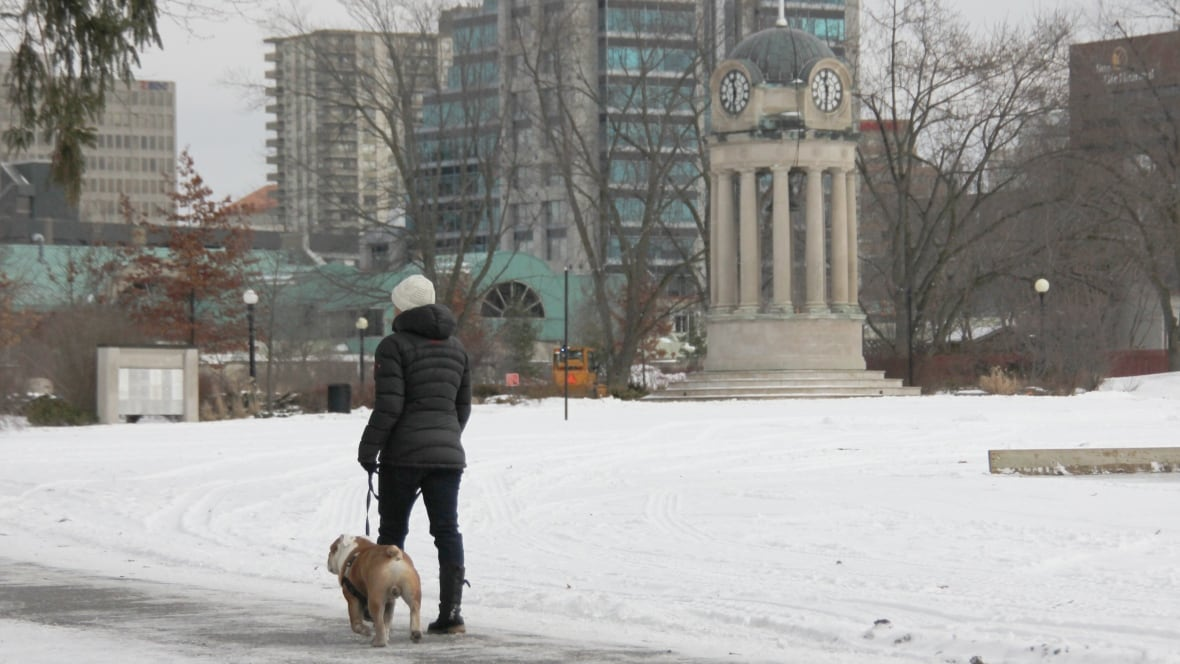 Kitchener Weather: Cold Thursday With High -7 C And NW Winds Gusting To 50 Km