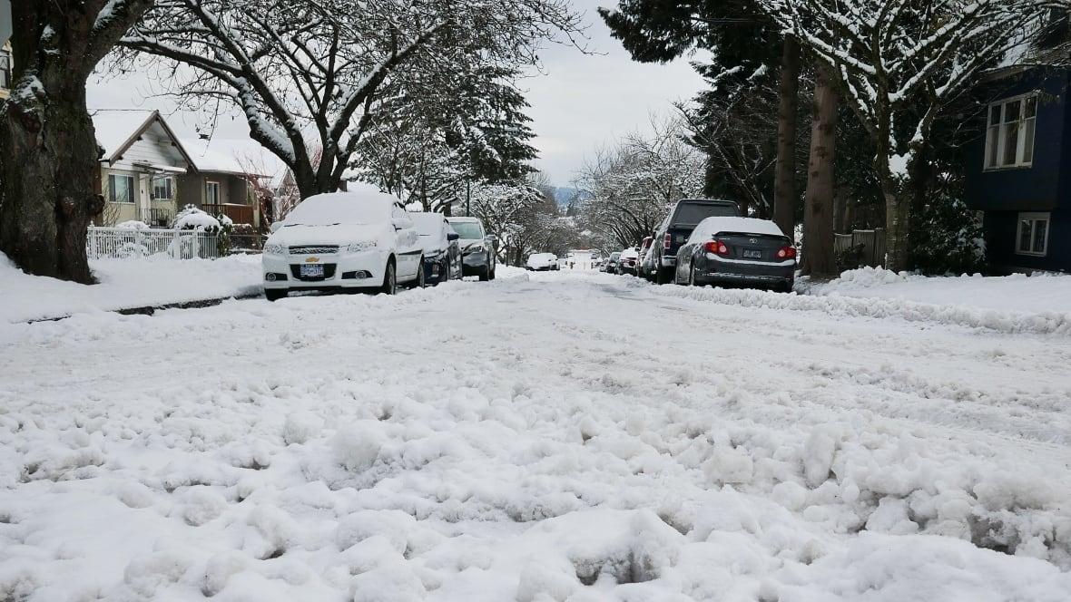 Surrey School Closures: Snow Brings School Closures, Transit Delays Across Metro