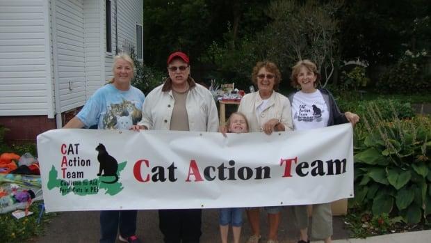 CAT Action Team