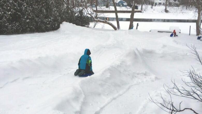 manotick dad wins winter with backyard luge run ottawa cbc news