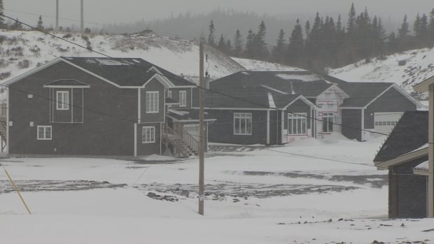 Houses under construction in a subdivision in Witless Bay. Mayor Sébastien Després says there are even more subdivision proposals before council.
