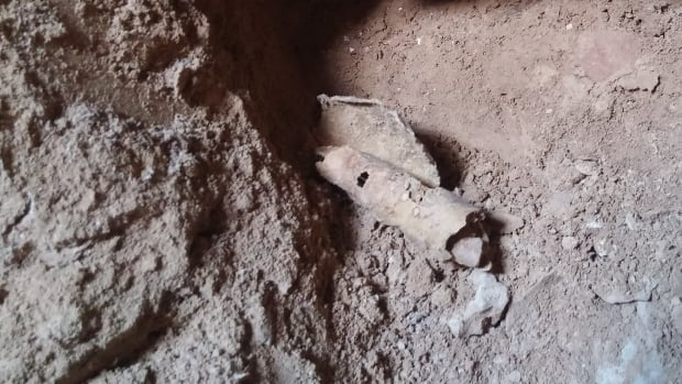 A piece of parchment found in a cave that researchers believed once held the Dead Sea Scrolls. This is the 12th cave that archaeologists have discovered.