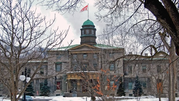 McGill University student Igor Sadikov's tweet has prompted one student group at the Montreal university to demand his resignation from student politics.