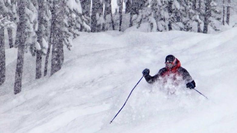 Annual Banff ski hiring fair draws nearly 700 job seekers
