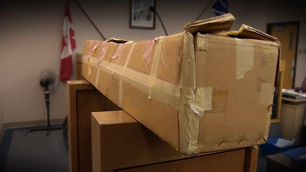 This box, which contains an unassembled child sex doll, is at the centre of a trial about child pornography in St. John's.