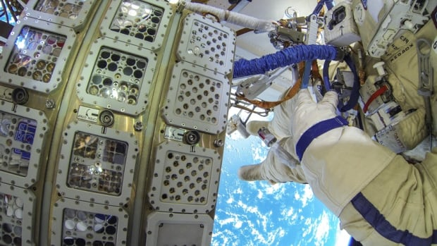 A number of diverse organisms were mounted to the outside of the ISS space station and exposed to the conditions of space for a year and a half.