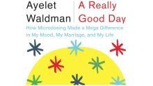A Really Good Day - Ayelet Waldman