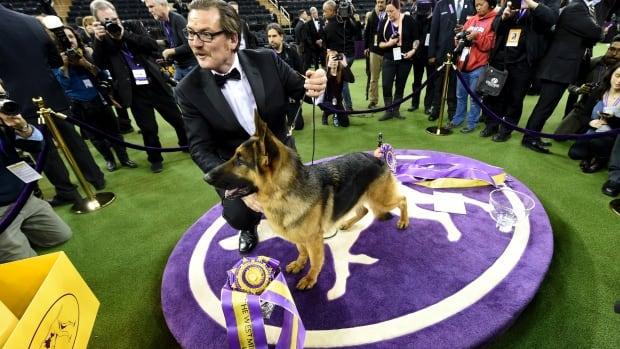 Olympic Kennel Club Dog Show