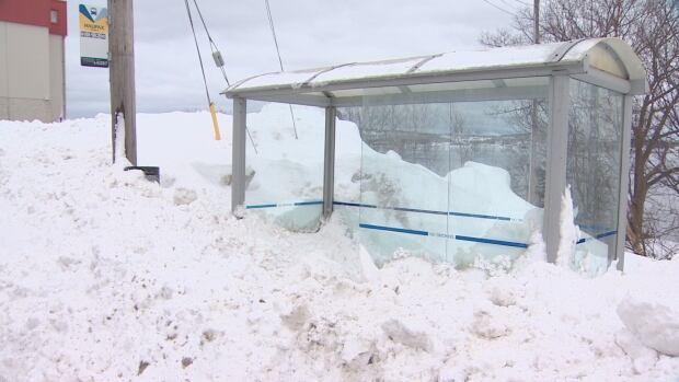 bus stop snowed in Halifax