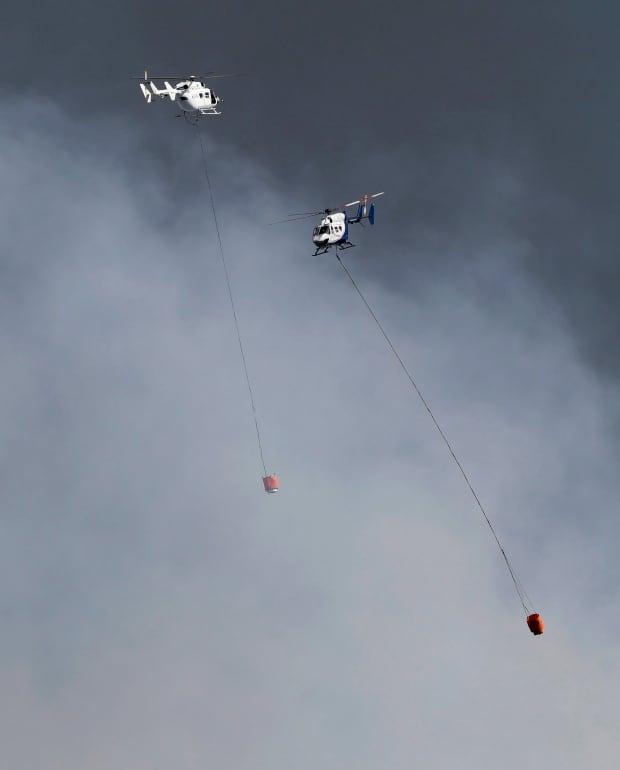 New Zealand Wild Fire