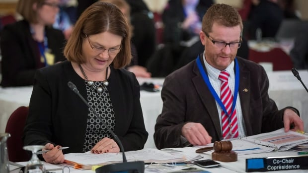 Federal Health Minister Jane Philpott and B.C. Health Minister Terry Lake, seen here during a meeting of health ministers in Vancouver last month, announced Friday that B.C. has agreed to a health funding deal with Ottawa.