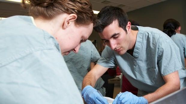 Anatomy students at McMaster University in Hamilton