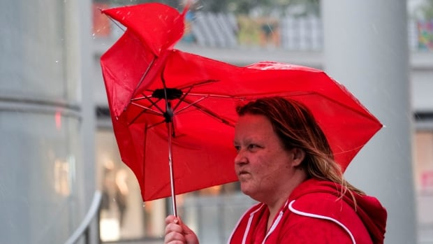 Umbrellas help us stay dry but when that wind hits, not so much.