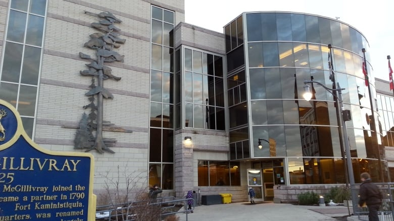 Thunder Bay anti-racism committee member resigns over mayor's town hall comments