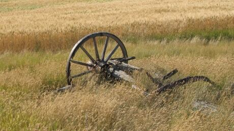 Retired Mountie pleads for return of heirloom wagon wheel