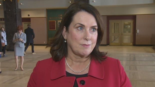 Minister of Natural Resources Minister Siobhán Coady says while her government would like to see an audit on Muskrat Falls, starting one now would be a distraction for the effort to get it finished.