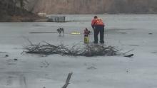 Hamilton police attempt to retrieve dog from ice