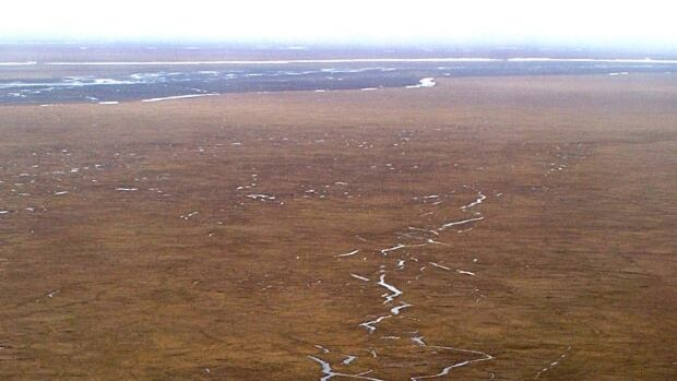 The coastal plain of Alaska's Arctic National Wildlife Refuge. Alaska Sen. Lisa Murkowski and other members of the state's congressional delegation have pushed to allow drilling in the coastal plain of the refuge.