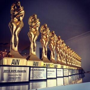 16 AVN awards in 2016