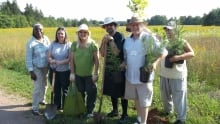 Quakers plant trees in Stratford, P.E.I. in 2015