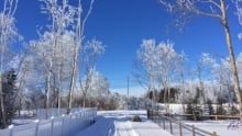 February day in Gander