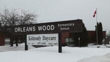 Orleans Wood