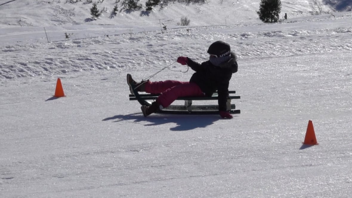 kids from do it yourself backyard luge track get to try the real thing