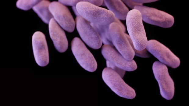 This illustration depicts a three-dimensional computer-generated image of a group of carbapenem-resistant Enterobacteriaceae bacteria, among the most fearsome resistant bacteria in the world.
