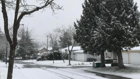 Yes, it's snowing again in Metro Vancouver