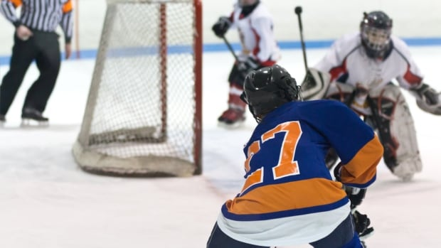 Mount Academy is starting with a focus on hockey, but the school's founder Kenny MacDougall says other sports could be added if there's enough interest.
