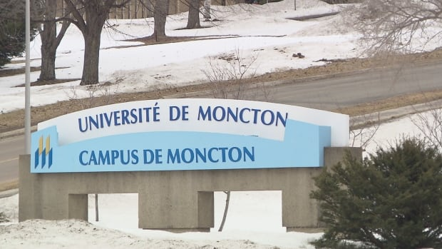 The University of Moncton says it stopped about 9,000 of the 10,000 emails sent to members of the campus community to humiliate one student.